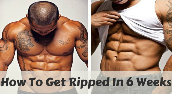 How to get ripped fast in 6 weeks: Fat guys lose fat ...